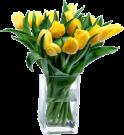 Gele tulpen in vaas